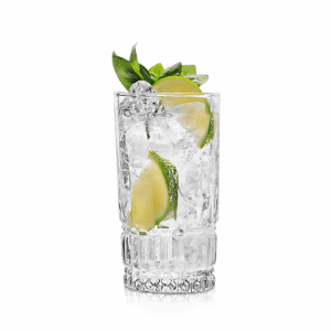 cocktail gin tonic vanzan