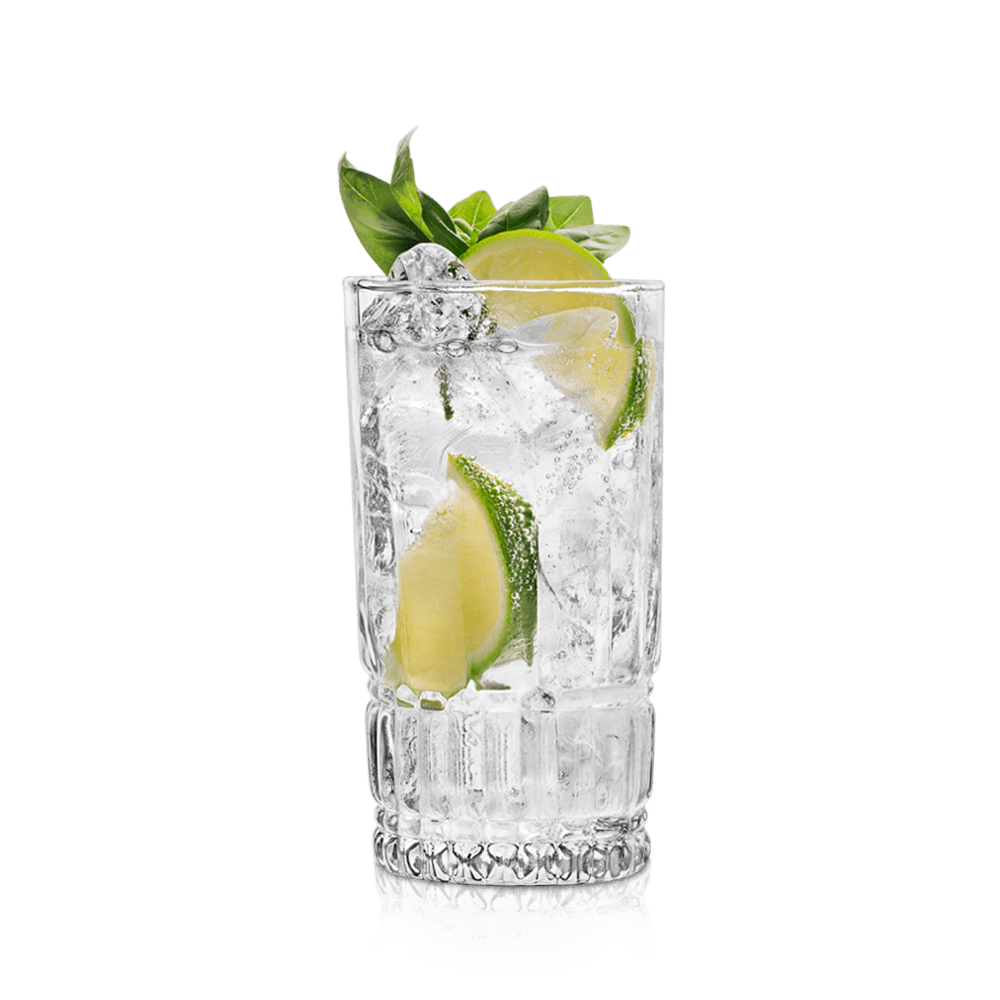 cocktail gin tonic vanzan